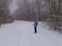 Ivan na ulazu u šumu